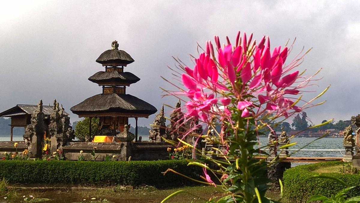 Bali il tempio di Danau bratan