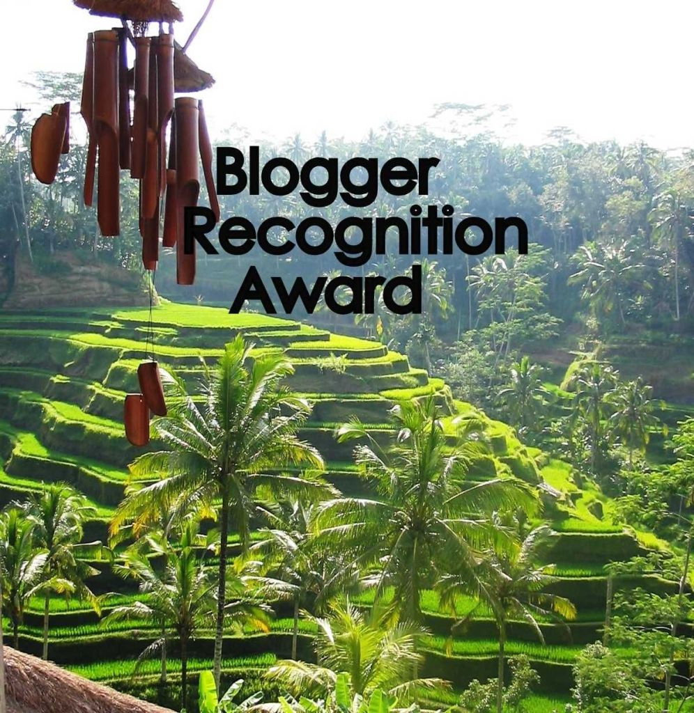 Indonesia con Bru a Blogger Recognition award 2017 qualche piccola gratifica