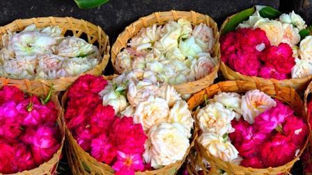 yogyakarta rose al mercato di Malioboro