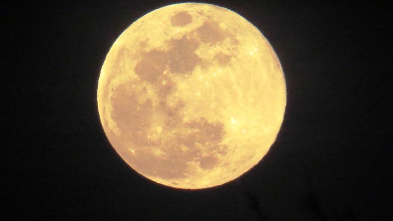 Bali la luna Purnama