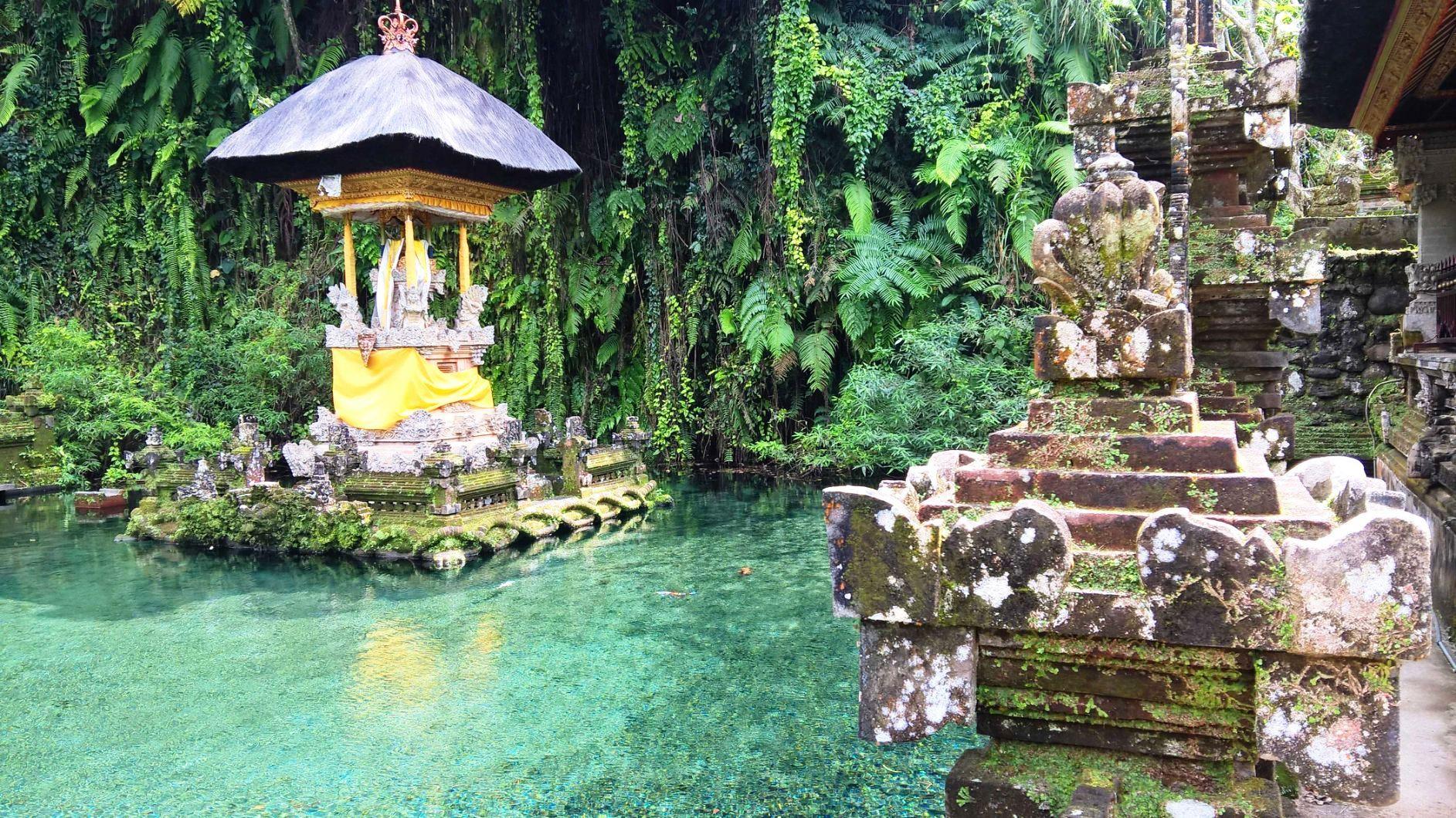 Bali Sebatu temple la vasca