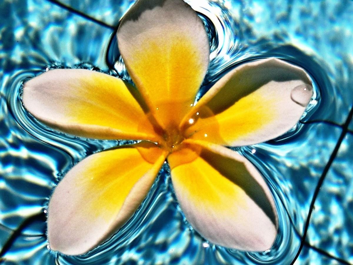 Vivere a Bali 5 motivi per farlo