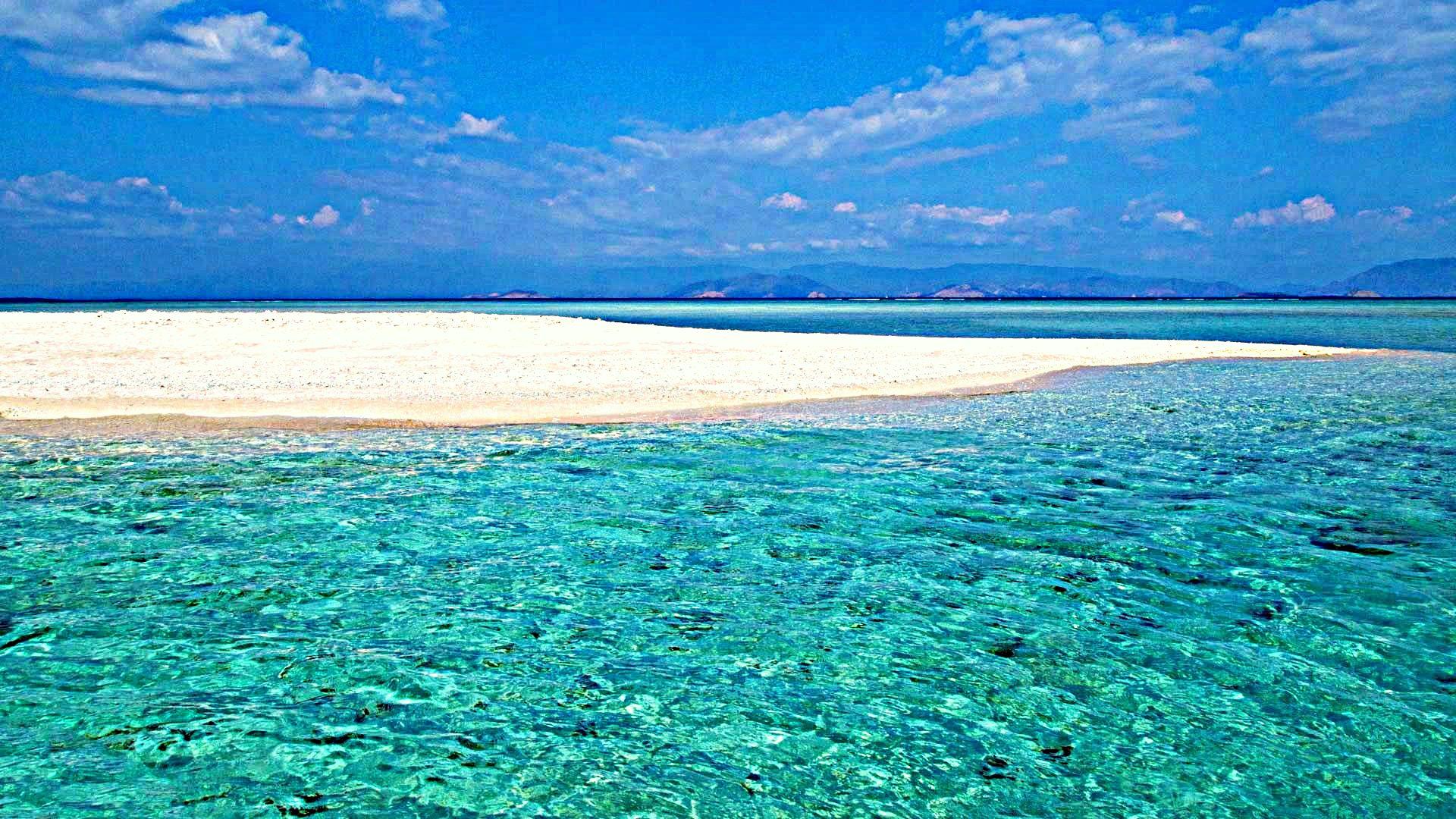 Molucche mare e banchi di sabbia