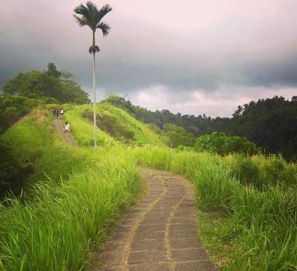 Campuhan Ridge walk - Ubud
