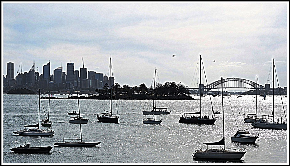 sydney rose bay