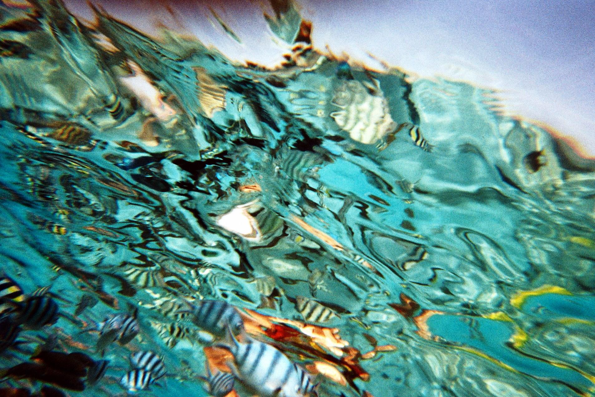 Sulawesi giochi di luci sott'acqua