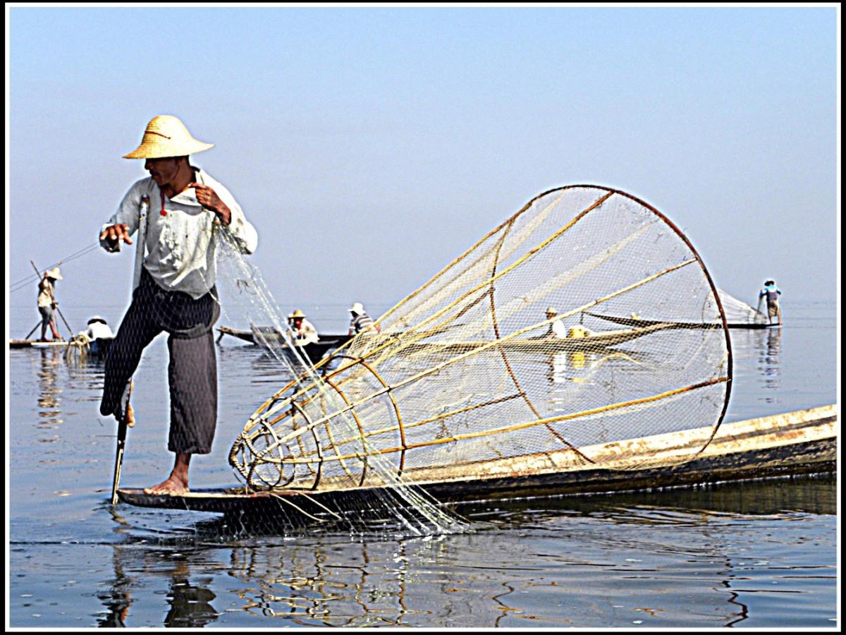 Myanmar lago Inle pescatore
